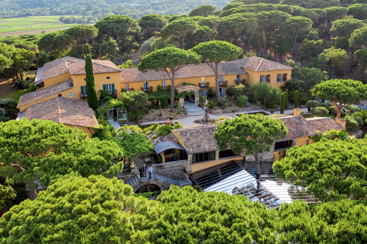 Villa Marie, in Ramatuelle, is sheltered by seven acres of pine forest.